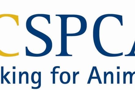 BCSPCA_logo[1]