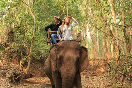 Elephant-Ride--Luang-Prabang,-Laos-15