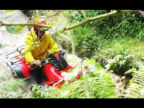 Quad Biking in Wellington
