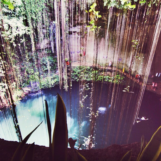 Ikkil cenote in #Mexico on my @viatortravel day tour from #Cancun . Wonderful water sinkholes formed via collapsed roofs of underground river.  #travel #cenotes #tbex #ttot