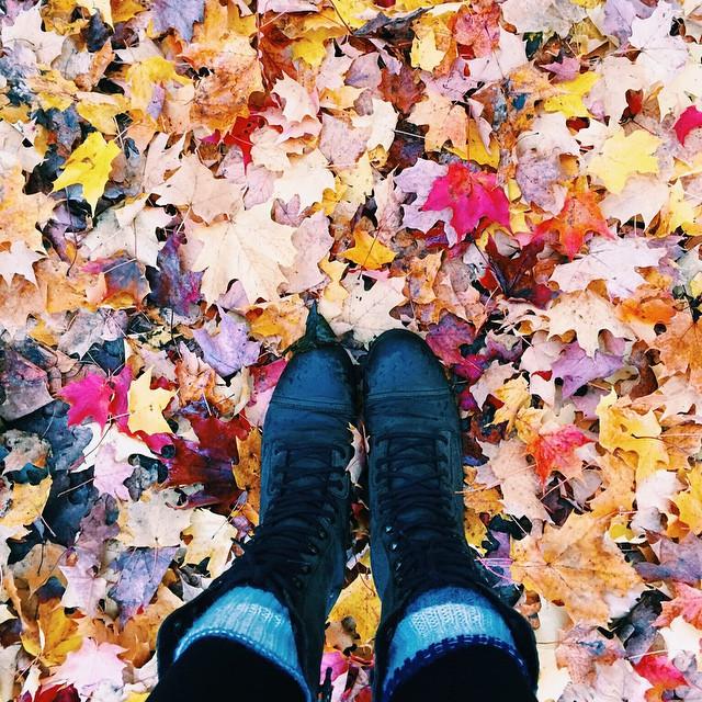 ???? #autumn