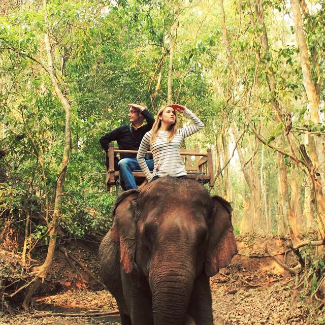 The Jungle Book. ???Laos, 2012. #jungles #elephants #southeastasia #backpacker #backpacking #laos #thailand
